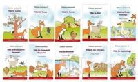 Tilkinin Serüvenleri (Düz Yazılı - 10 Kitap Takım)