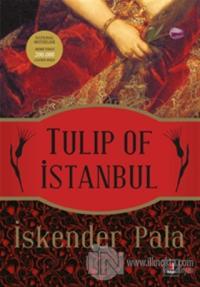 Tulip of Istanbul