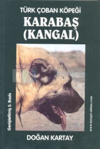 Türk Çoban Köpeği Karabaş (Kangal)
