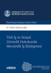 Türk İş ve Sosyal Güvenlik Hukukunda Mevsimlik İş Sözleşmesi (Ciltli)