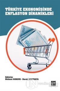 Türkiye Ekonomisinde Enflasyon Dinamikleri