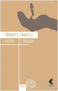 Türkiye Tahlili