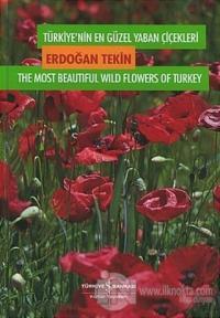 Türkiye'nin En Güzel Yaban Çiçekleri 1. Cilt 1. Volume (Ciltli)