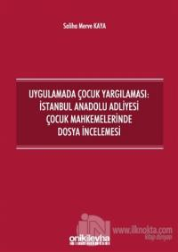Uygulamada Çocuk Yargılaması: İstanbul Anadolu Adliyesi Çocuk Mahkemelerinde Dosya İncelemesi