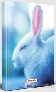 Uykucu Tavşan - Süresiz Planlama Defteri