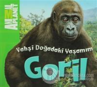 Vahşi Doğadaki Yaşamım: Goril