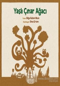 Yaşlı Çınar Ağacı