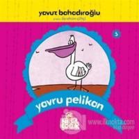 Yavru Pelikan