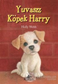 Yuvasız Köpek Harry