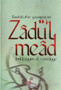 Zadü'l Mead (3 Cilt Takım) (Ciltli)