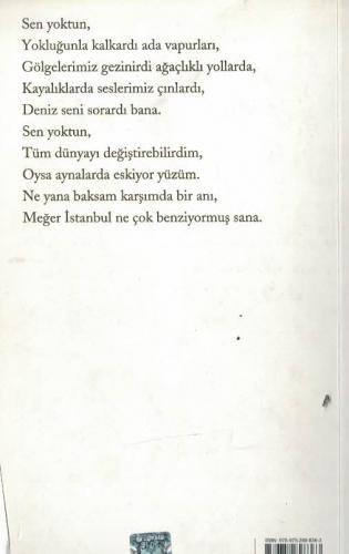 Sokağın Zulası Ahmet Ümit