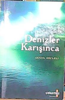 DENİZLER KARIŞINCA