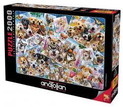 Selfie Kolaj Puzzle 2000 Parça 3947