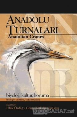 Anadolu Turnaları