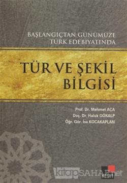 Başlangıçtan Günümüze Türk Edebiyatında Tür ve Şekil Bilgisi