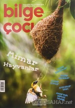 Bilge Çocuk Dergisi Sayı: 33 Mayıs 2019 - Kolektif | Yeni ve İkinci El