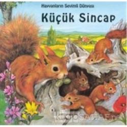 Hayvanların Sevimli Dünyası Küçük Sincap (Ciltli)