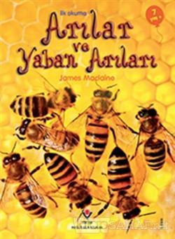 İlk Okuma - Arılar ve Yaban Arıları