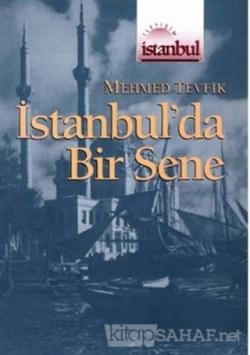 İstanbul'da Bir Sene