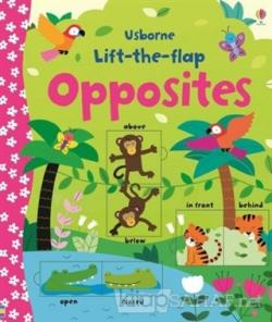 Lift-The-Flap Opposites - Felicity Brooks | Yeni ve İkinci El Ucuz Kit