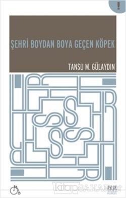 Şehri Boydan Boya Geçen Köpek