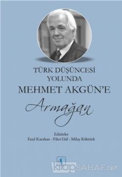 Türk Düşüncesi Yolunda Mehmet Akgün'e Armağan
