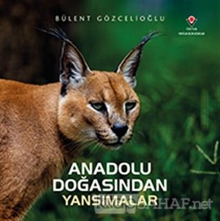 Anadolu Doğasından Yansımalar (Ciltli) - Bülent Gözcelioğlu- | Yeni ve