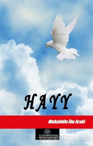 Hayy - Muhyiddin İbn Arabi | Yeni ve İkinci El Ucuz Kitabın Adresi