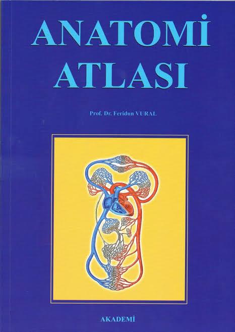 ANATOMİ ATLASI - Komisyon | Yeni ve İkinci El Ucuz Kitabın Adresi