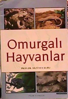 OMURGALI HAYVANLAR - Mustafa Kuru-   Yeni ve İkinci El Ucuz Kitabın Ad