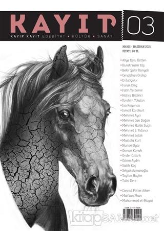 Kayıp Kayıt Edebiyat Kültür ve Sanat Dergisi Sayı: 3 Mayıs - Haziran 2