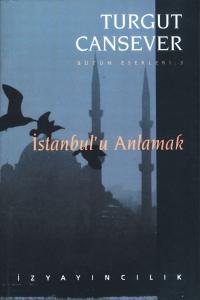 İstanbul'u Anlamak