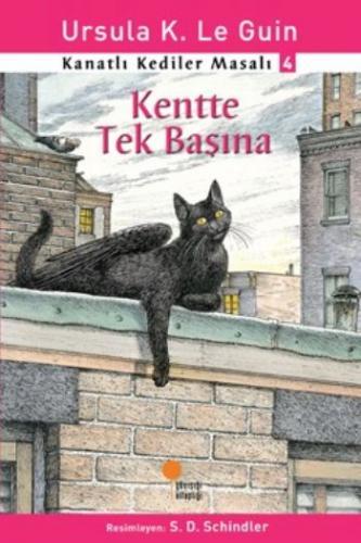 Kanatlı Kediler Masalı-4 Kentte Tek Başına