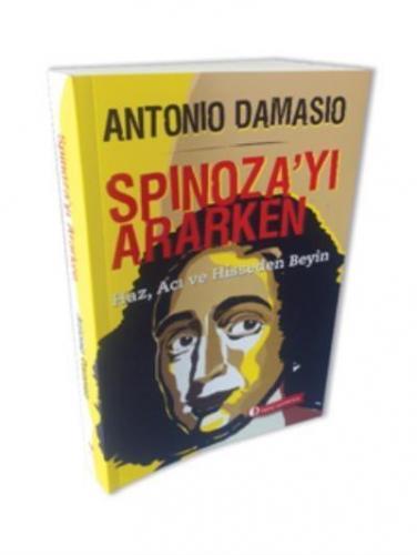 Spinoza'yı Ararken