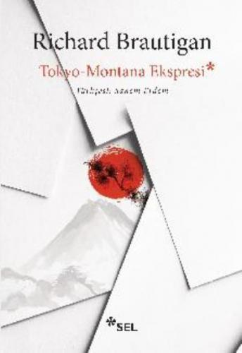 Tokyo-Montana Ekspresi