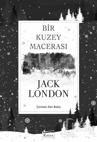 Bir Kuzey Macerası (Bez Ciltli) - Kitap16