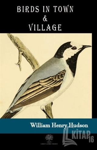 Birds in Town and Village - Kitap16