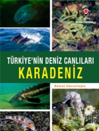 Karadeniz - Türkiye'nin Deniz Canlıları (Ciltli) - Kitap16