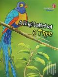 A Bird Landed On A Tree - Respect; Stories With The Phoenix