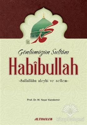Gönlümüzün Sultanı Habibullah (s.a.s)