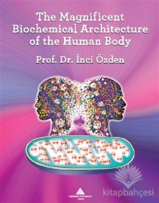 The Magnificent Biochemical Architecture of the Human Body İnci Özden