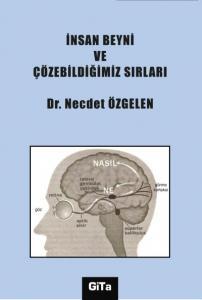 İnsan Beyni ve Çözebildiğimiz Sırları