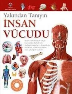 İnsan Vücudu-Yakından Tanıyın