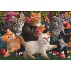 Oyuncu Kediler (Puzzle 260) 3327
