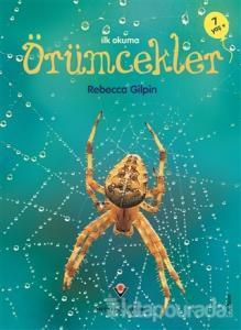 İlk Okuma -  Örümcekler