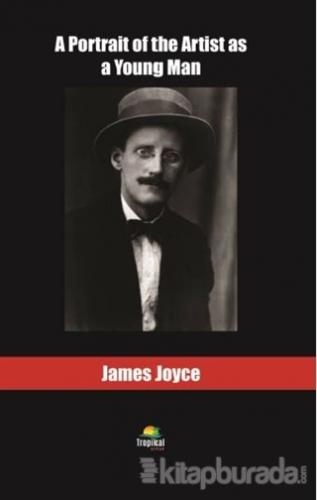 A Portrait the Artist as a Young Man James Joyce