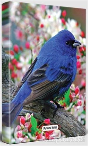 Kuş Bakışı - Süresiz Planlama Defteri