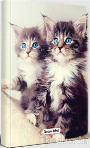 Maviş Kediler - Planlama Defteri