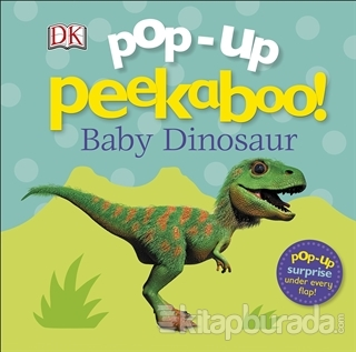 Pop Up Peekaboo! Baby Dinosaur (Ciltli)
