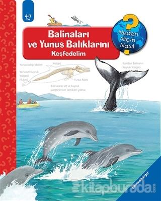 Ravensburger Maksi - Balinaları ve Yunus Balıklarını Keşfedelim (Ciltli)
